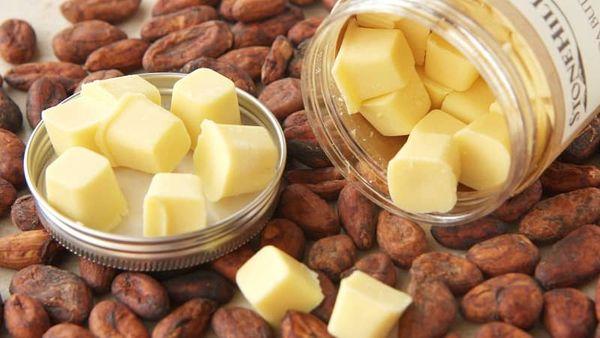 Công Dụng Của Bơ Cacao